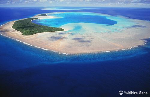 南の島の青い風 パラオ カヤンゲル 岩礁
