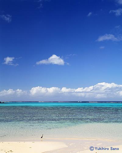 ラロトンガ島 クック諸島