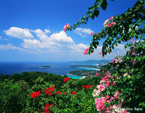 ハワイ島 ハワイ